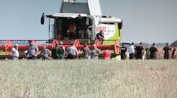 В Киеве поручили разобраться с земельными махинациями властей Подольского района (документ)